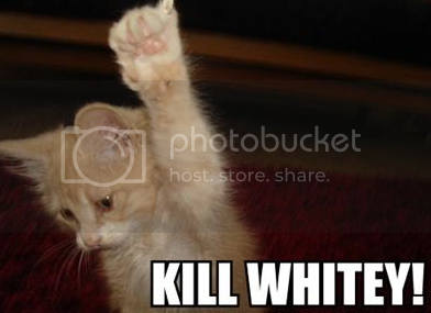 whitey photo: kill whitey killwhiteynv6.png